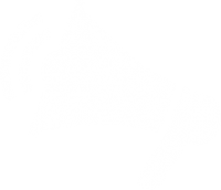 icon-megaphone-bullhorn
